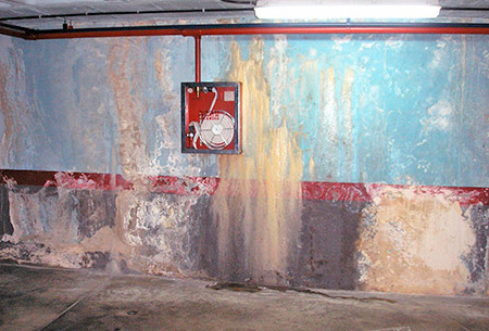 Treatment and elimination of leaks and damp.